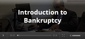 introductino to bankruptcy